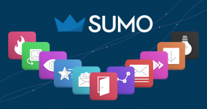 Sumo Banner
